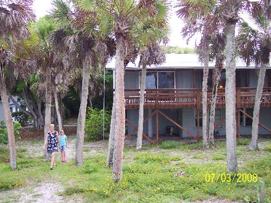 Manasota Beach Club: Spoonbill