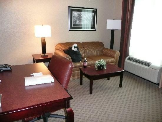 Hampton Inn & Suites Jacksonville-Airport: Area across from bed