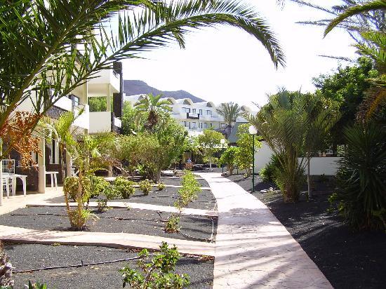 Royal Monica : vista hotel desde enfrente de la habitacion