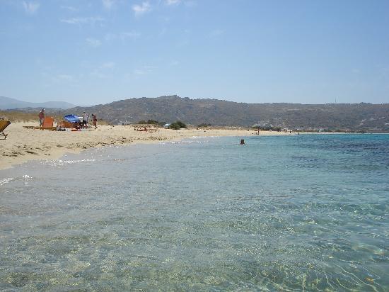 بلازا بيتش هوتل: spiaggia nei pressi dell'hotel