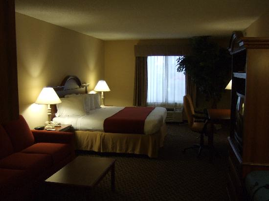 Holiday Inn Express I-20 at Clemson Road: Hotel room