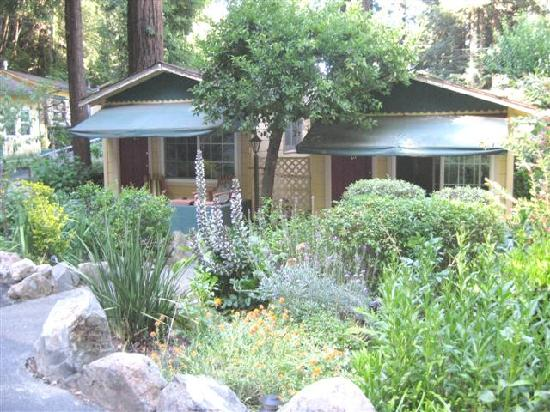 Fern Grove Cottages: View of cabins