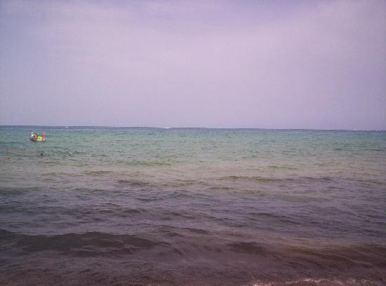 El Mouradi El Menzah: Seaweeds at the beach