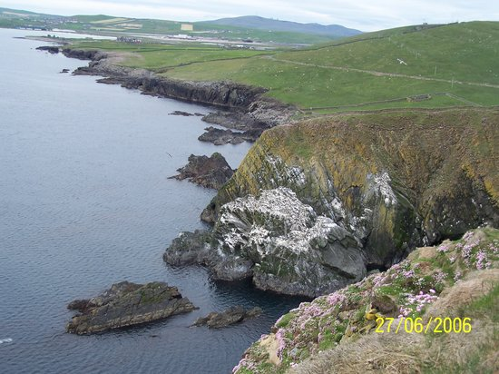 Lerwick, UK : Sumburgh - view from the cliff