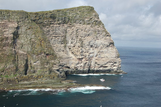 Lerwick, UK: Noss - kingdom of birds