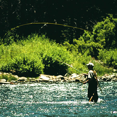 Fly fishing in Reno on the Truckee River