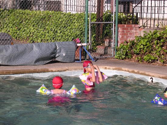 Humboldt Redwoods Inn: Swimming Pool