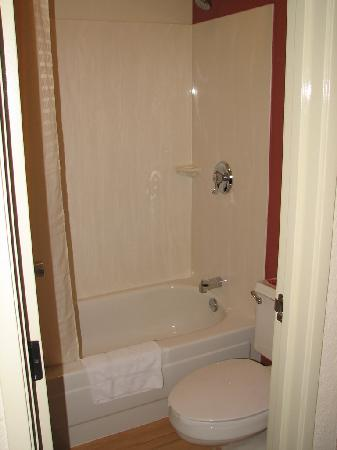 Red Roof Inn Huntington: Tub