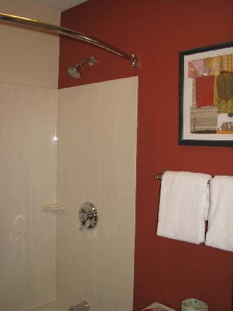Red Roof Inn Huntington: Bathroom decor