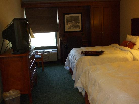 Hampton Inn Bellingham-Airport: Room