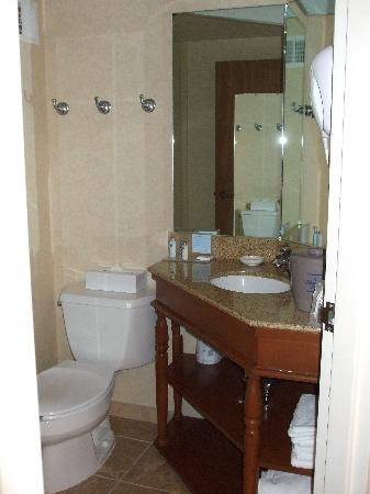 Hampton Inn Bellingham-Airport: Bathroom