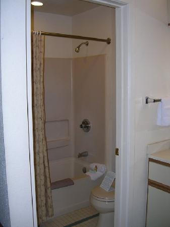 Staybridge Suites Dulles: Bathroom