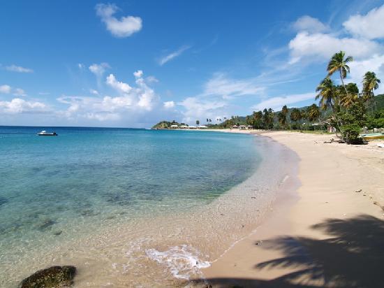 Curtain Bluff Resort: View of Beach 2