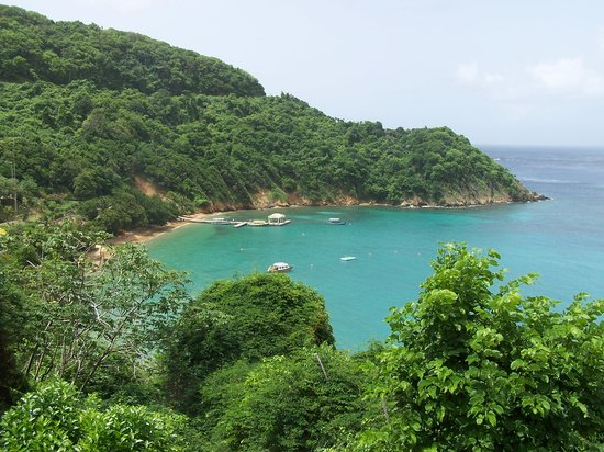 โตเบโก: One more pretty place in Tobago