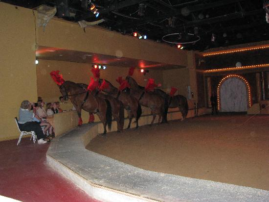 The Dancing Horses Theatre: side seating during the Dancing Horses show
