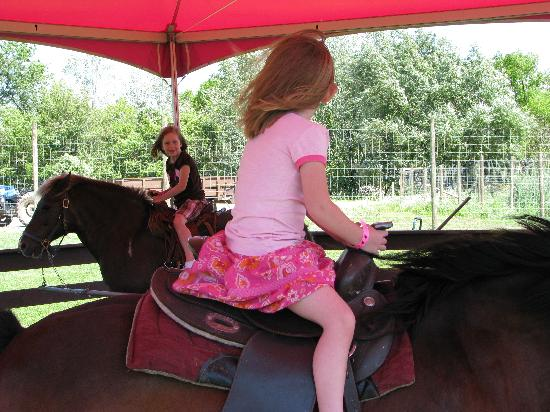 The Dancing Horses Theatre: $3 pony ride
