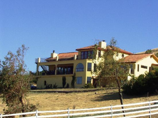 Black Sterling Villa and Vineyard Estate : backside of home