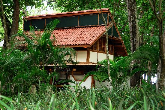 The Red Palm Villas: Original creastions of beauty
