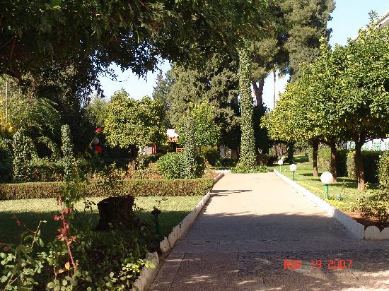 Transatlantique: jardin de l'hotel