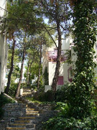 Club Med Bodrum Palmiye: village
