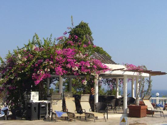 Club Med Bodrum Palmiye: kisoque