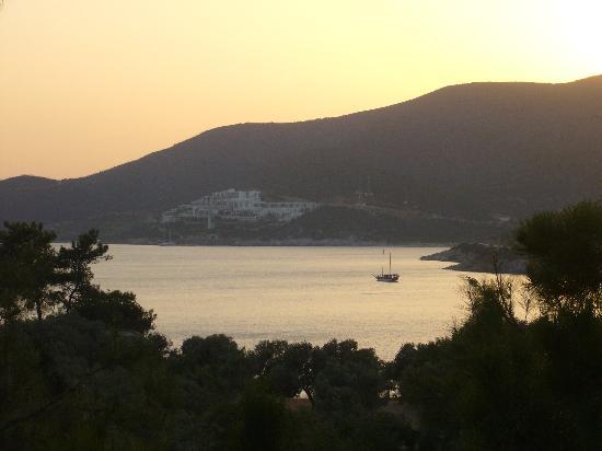 Club Med Bodrum Palmiye: vue balcon