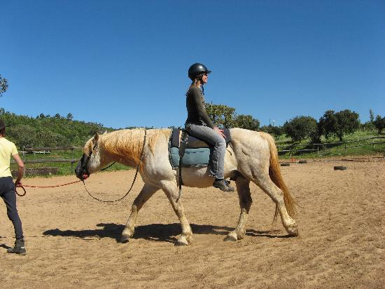 Holistic Riding Center: I learned to trust my horse