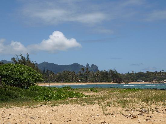 Moana Kai Beach Houses: From the beach in our backyard