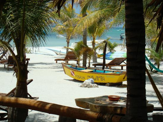 Holbox Hotel Casa las Tortugas - Petit Beach Hotel & Spa: The beach from the bar