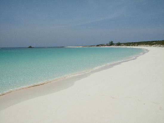 Staniel Cay Yacht Club: Compass Cay