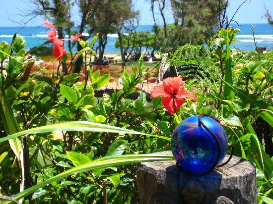 Moana Kai Beach Houses: Hibiscus on the lanai