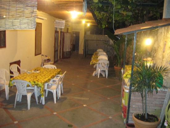 La Musa B&B: Yard and eating area at night 1