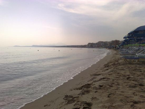 Litsa's Lefkoniko Beach Hotel : Beach