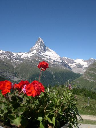 Hotel Alpenhof : The Matterhorn from Sunnegga
