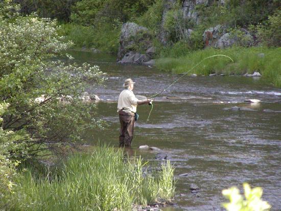 Hisega Lodge : Fishing Rapid Creek