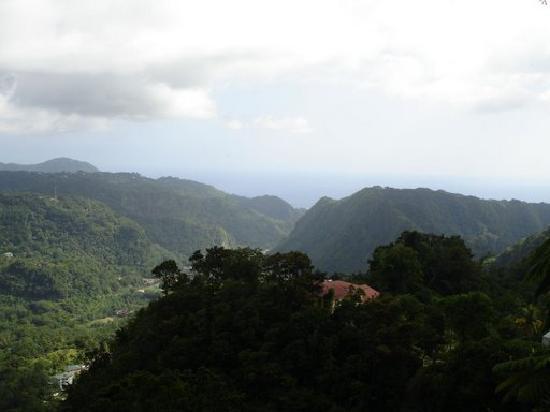 Middleham Falls & Ti Tou Gorge : The views driving from Middleham to Titou Gorge