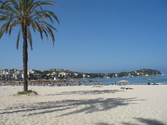 View from reception picture of sentido punta del mar santa ponsa tripadvisor - Casa del mar palma de mallorca ...