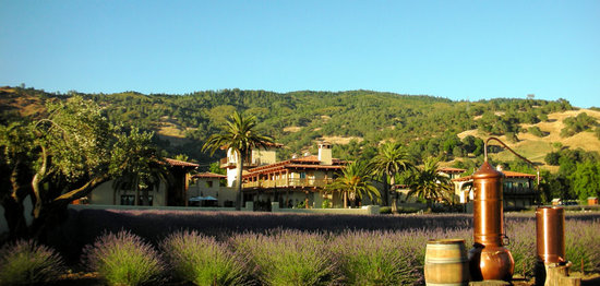 Nice, Californien: View of the winery estate from Lake.