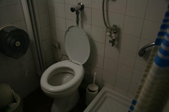 Athens International Youth Hostel: Toilet