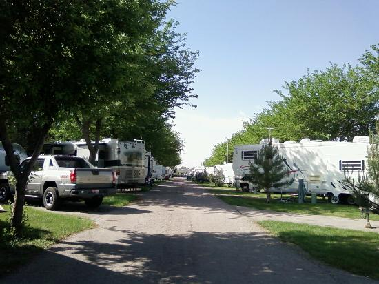 Salt Lake City KOA : Shady campsites. They can really pack them in.