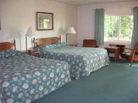 Acadia Pines Motel: room with twin Queen beds