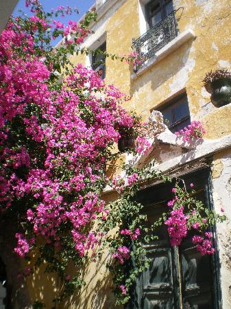 Hotel Dina: market street