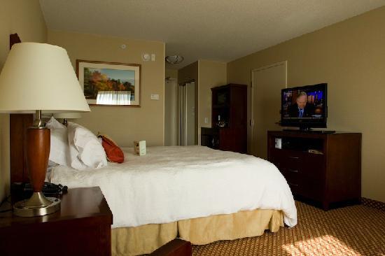Hilton Garden Inn Idaho Falls: Room 419, King bed