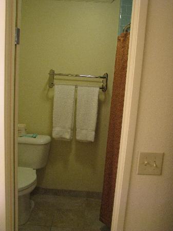 Best Western Plus Royal Oak Hotel: Small bathroom without a fan.
