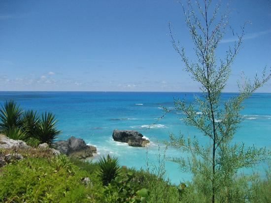 The Reefs: View from our room!