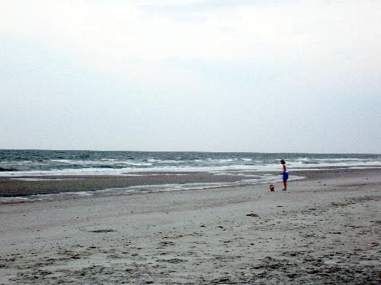 Folly Beach, SC: Uncrowded beach is pet friendly at certain hours.