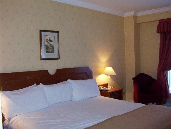 Grafton Capital Hotel: king room