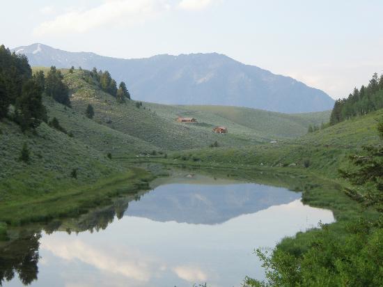 写真Wilderness Edge枚