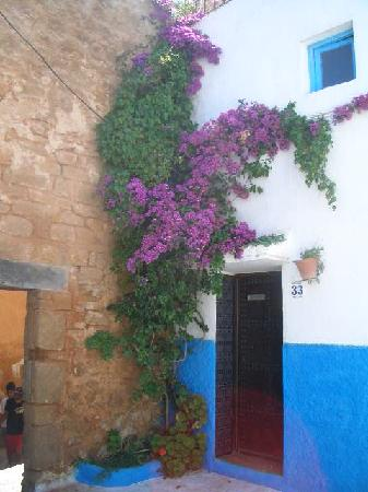 Kasbah des Oudaias: hanging flowers and blue wall