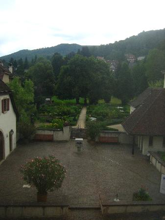 Hotel Gasthof zum Ochsen: View of the garden from one of the rooms